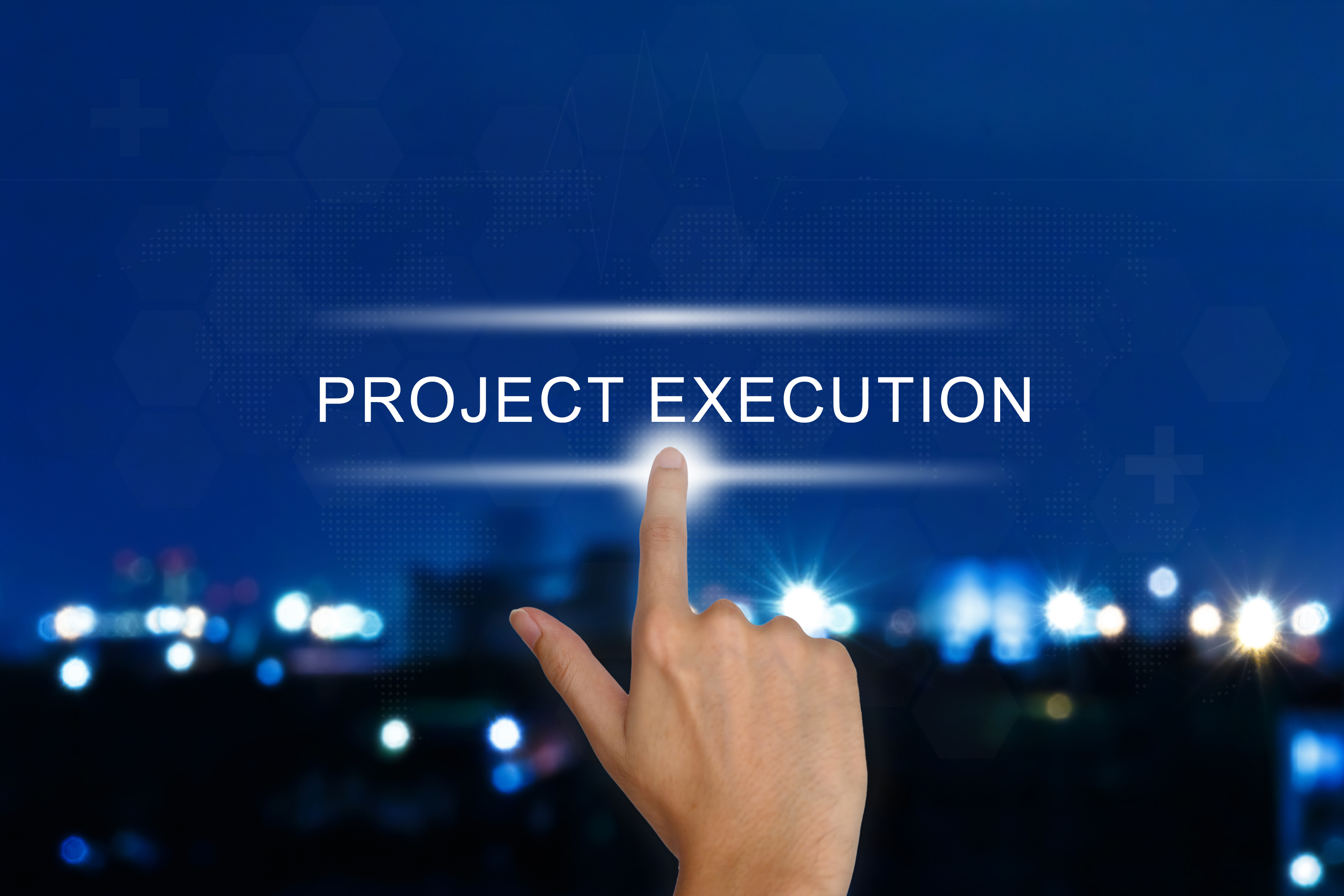 Project Plan Execution Leadership